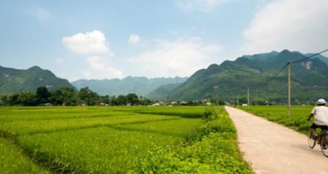 Vietnam-VanVerre27