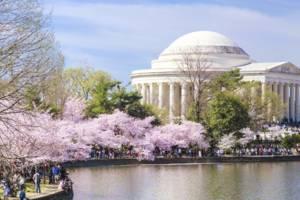 Amerika-Washington-Jefferson-Memorial_2_501281
