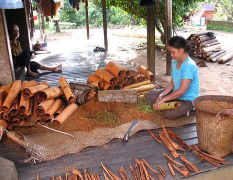 Indonesie-Kalimantan-loksado-houthakken