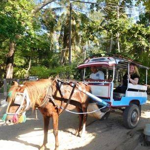 Indonesie-Lombok-GiliMeno-paardenwagen_3_287489