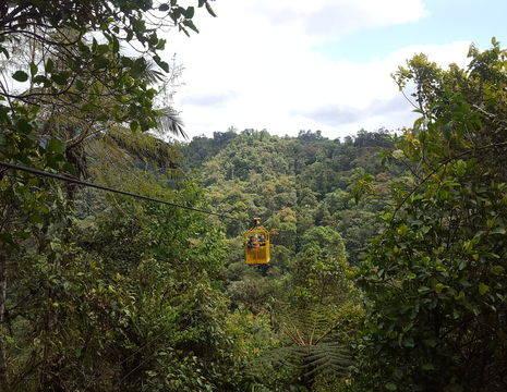 Vlieg boven het bos in Mindo