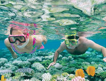 Dagtour Great Barrier Reef