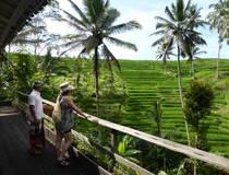 Ubud: Op stap met een Balinees