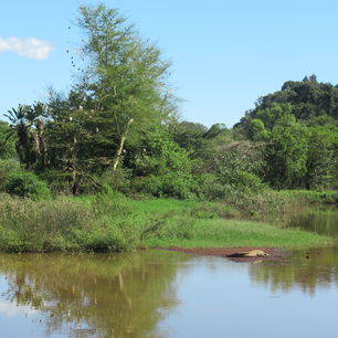 Mlilwane-National-Reserve-3