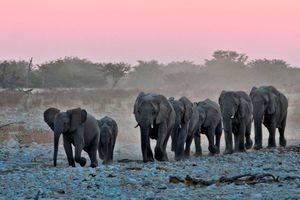 Waarom verliefd op Namibië