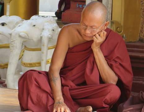 Myanmar-Yangon-monnik bij Shwedagon(8)