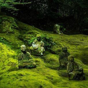 Japan-Kumamoto-Beelden_1_471702