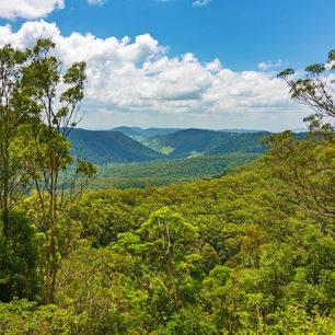 Australie-Lamington-National-Park_1_576567