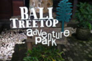 Midden Bali: Treetop Adventure Park
