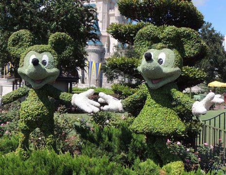 Amerika-Disney-World-Florida_2_518921