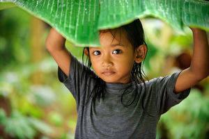 Klimaat Indonesie
