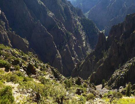 Amerika-Black-Canyon-Groen