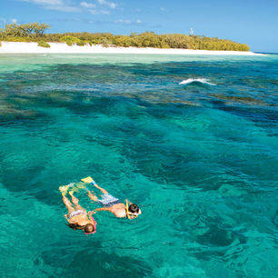Australie-Lady-Elliot-Island-snorkelen