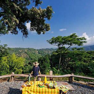 Colombia-Koffieregio-Finca-Romelia-Orchideentour-3