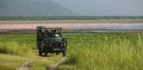 Afrika-Tanzania-Lake-Manyara1