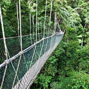 maleisie-tamannegara-hangbrug2