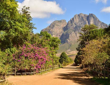 Een fruitboerderij in de wijnlanden van Zuid-Afrika