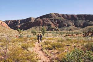 Dagtocht West MacDonnell Ranges vanuit Alice Springs