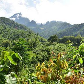 Uitzichten vanaf het pad naar de 100 Waterfalls, Nong Khiow - Laos