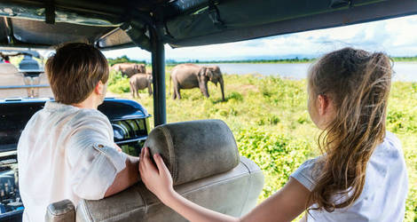 Sri-Lanka-Udawalawe-National-Park-olifanten-spotten-tiener