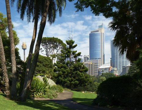 Australie-Sydney-botanische-tuinen