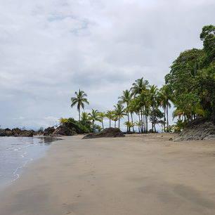 Colombia-Nuqui-strand_1_482350