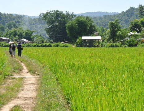 Myanmar-Hsipaw-trek(8)