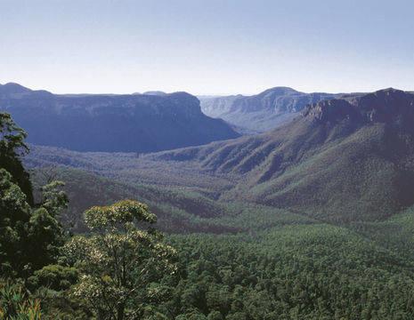 Australie-Blue-Mountains-uitzicht_1_559982