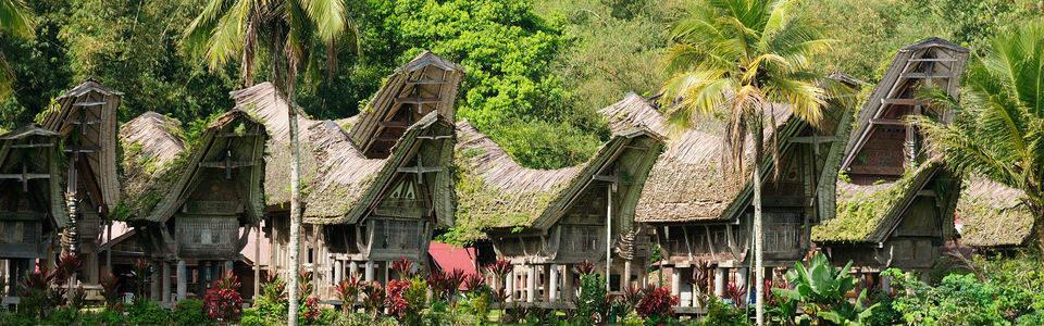 Traditionele huizen op Sulawesi