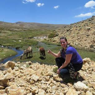 Dieren-van-dichtbij-in-de-Colca-Canyon(9)