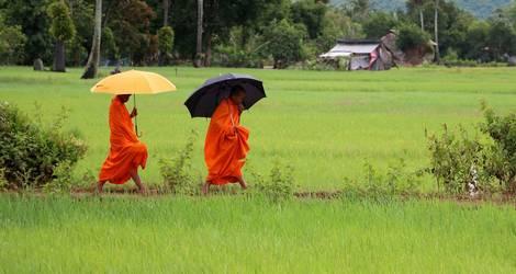 Cambodja-Kampot-Monniken_1_549598
