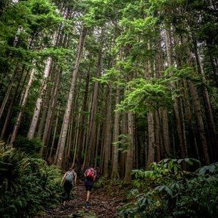 Canada-Vancouver-Grouse-Mountain