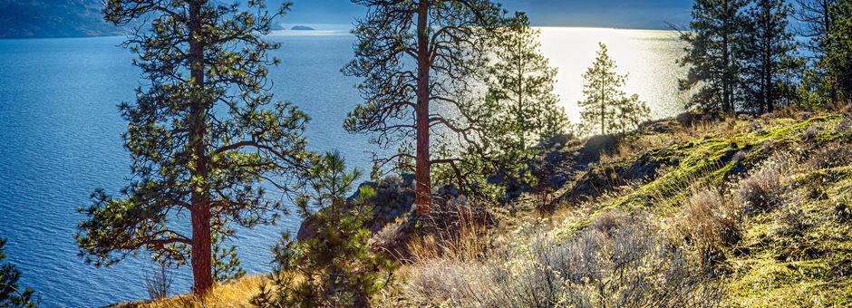 Canada-Okanagan-Lake-1_2_503375