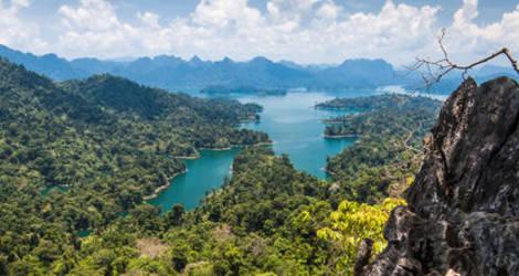 Thailand-Khao-Sok-jungle1(9)