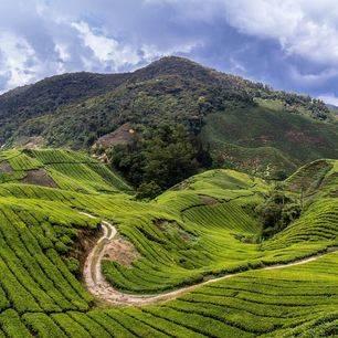 Maleisie-Cameron-Highlands-View_2_380217