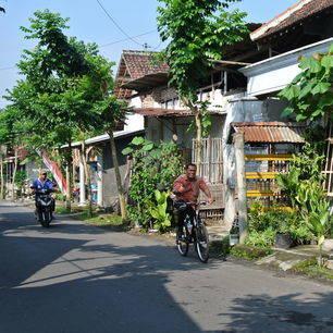 Java-Blitar-straatje met fietser