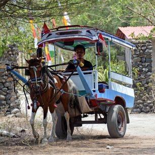 Lombok-Gili-Air-Paard-Wagen_1_453648
