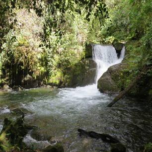 San-Gerardo-de-Dota-Waterval(6)