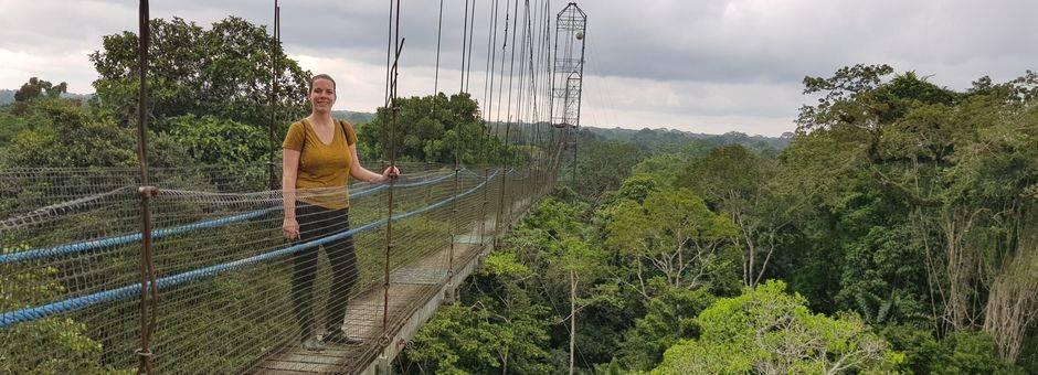 Ecuador-Coca-Amazonegebied-suspension-bridge