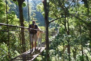 Panama-Boquete-Wandeling