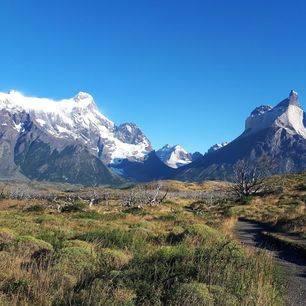 Chili-Torres-del-Paine-gletsjers2_3_450242