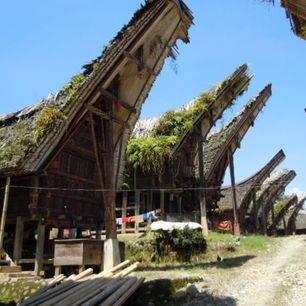 indonesie-sulawesi-torajaland-zadeldaken