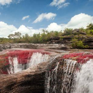 Colombia-Cano-Cristales-kleurrijke-rivier