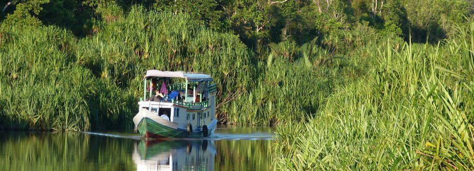 Kalimantan-Tanjung Puting NP-Klotok3(13)