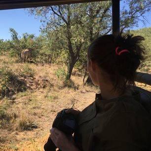 Krugerpark-Wildlife-Spotten_1_349003