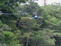 Canopy (Selvatura Park)