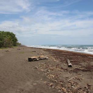 Costa-Rica-Tortuguero-Strand(10)