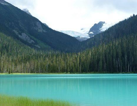 Canada-Whistler-gletsjer_1_544106