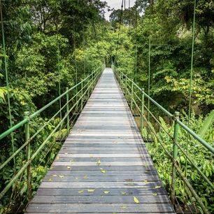 Costa-Rica-Puerto-Viejo-de-Sarapiqui-Hangbrug_1_415102