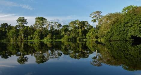 Colombia-Amazone-Lago-de-tarapoto